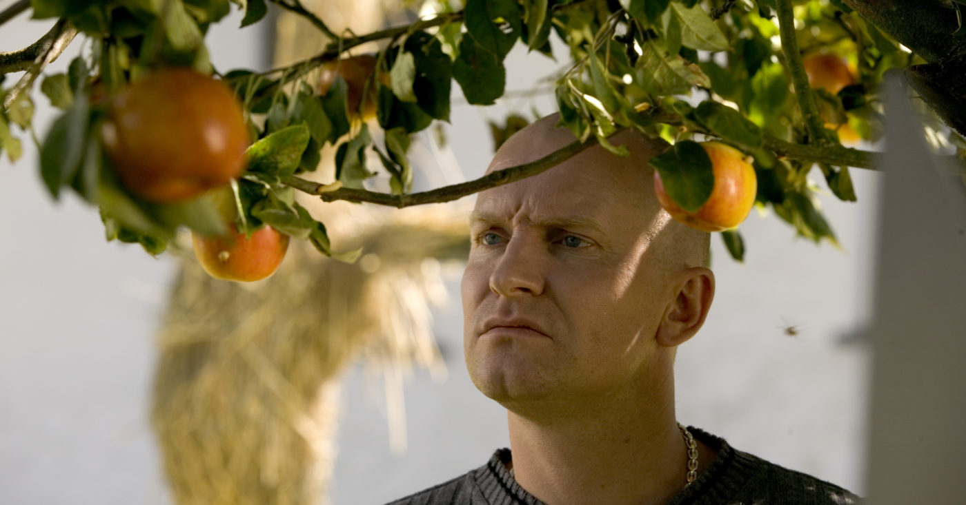 Adams epler