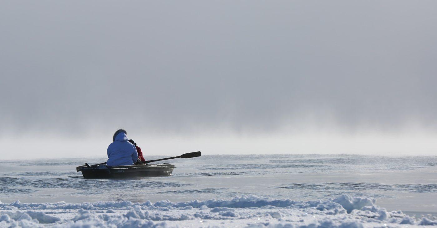 Polart vin og viten: Angry Inuk