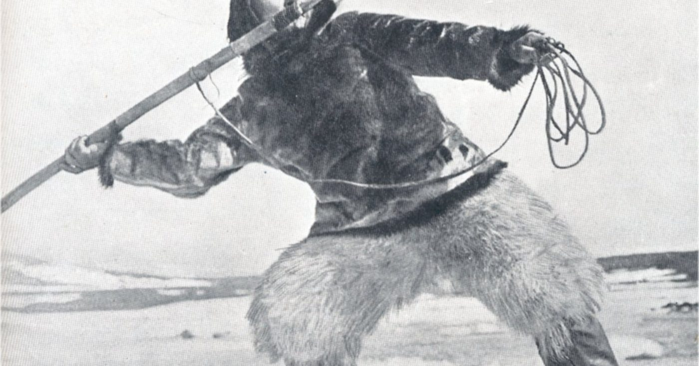 POLART VIN OG VITEN: NANOOK OF THE NORTH