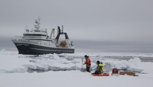 UiT - Breakfast on the Biology and Politics of Arctic Sea Ice