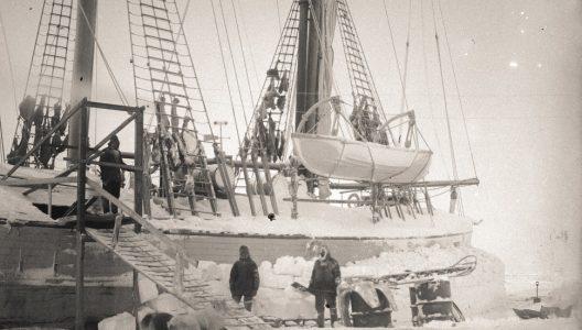 Polart vin og viten: Roald Amundsens ekspedisjonsfilmer